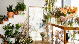 پنل پیامکی برای فروشندگان گیاه و گلها